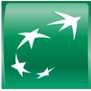 bnp-icon